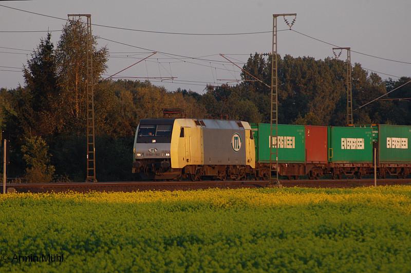 http://www.muehlenroda.de/dso/09_2008/DSC_6931a.jpg